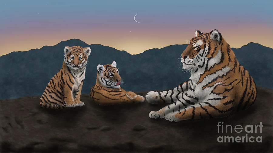 Tiger Twilight - Siberian Tiger and Two Cubs by the Ford Family