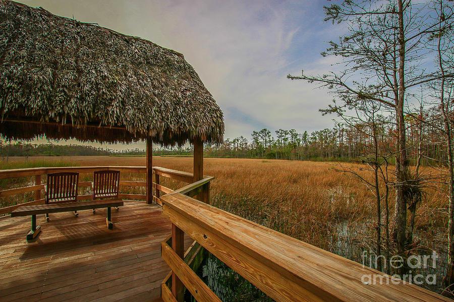 Tiki Hut Marsh View by Tom Claud