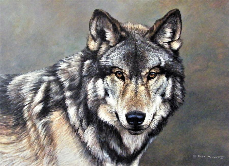 Timber Wolf by Alan M Hunt by Alan M Hunt