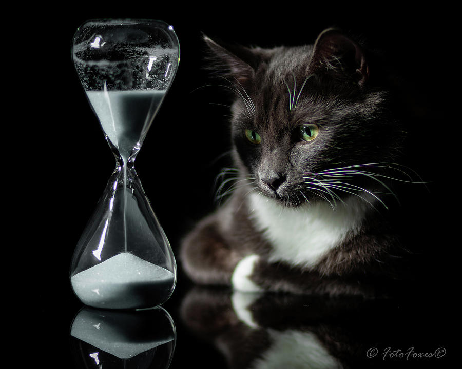 Time Keeper by Alexander Fedin