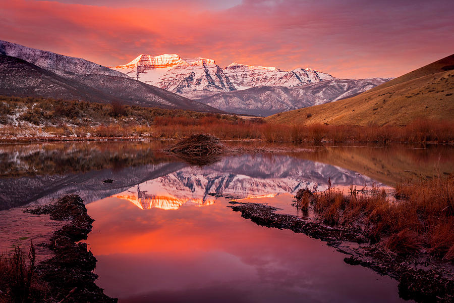 Timp Beaver Pond Sunrise by Johnny Adolphson