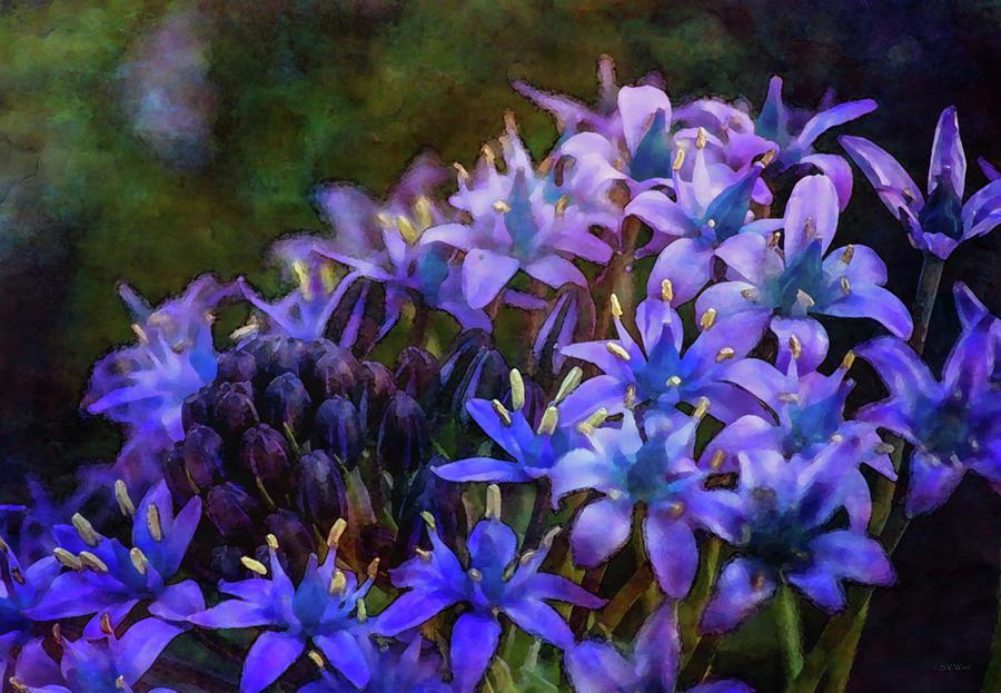 Tiny Purple Crowns 6484 IDP_2 by Steven Ward