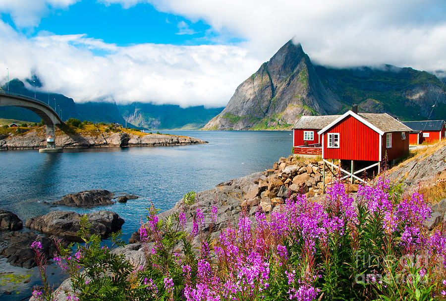 Mountains Photograph - Tipical Red Fishing Houses In A Harbor by Maria Uspenskaya
