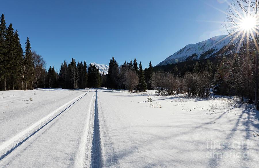 Kenai Peninsula Photograph - Tire Tracks In Snow In An Isolated Area Of The Kenai Peninsula by Louise Heusinkveld