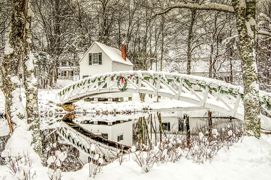 Tis The Season by Susan Garver