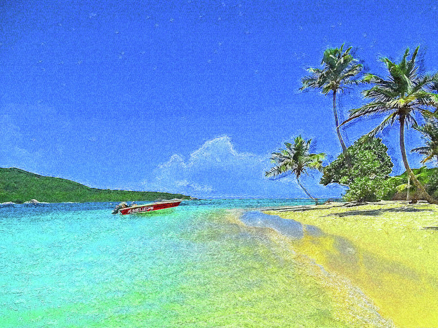 Tobago Cays Impressionism by Island Hoppers Art
