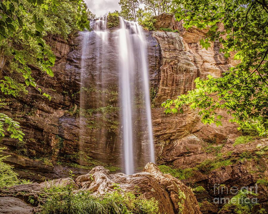 Toccoa Falls by Nick Zelinsky