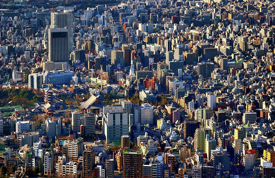 Tokyo Birds-eye Vie Photograph by Vladimir Zakharov