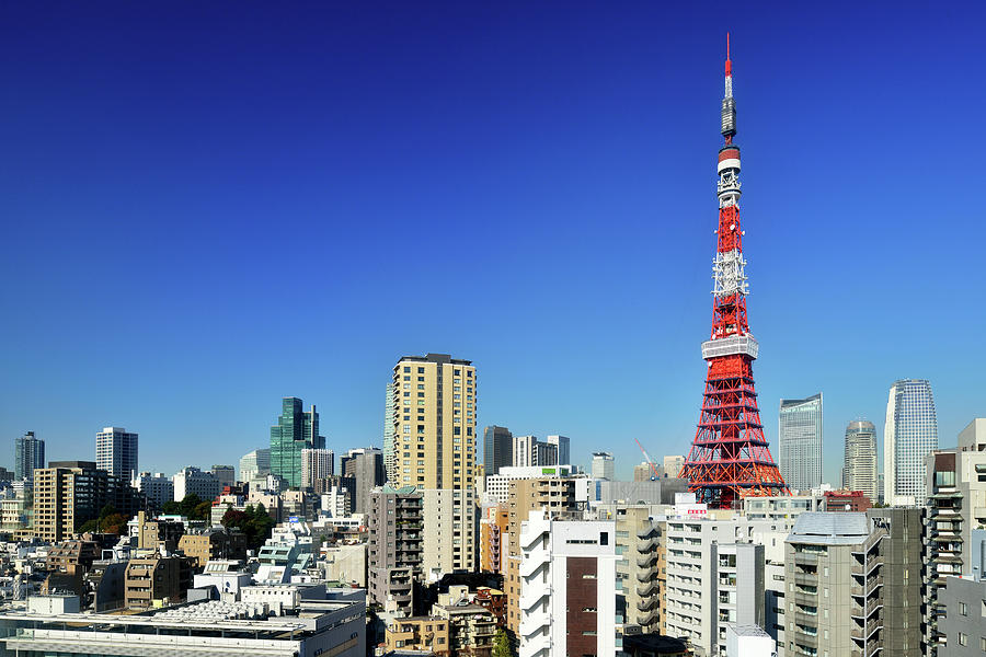 Tokyo Tower And Cityscape Photograph by Vladimir Zakharov