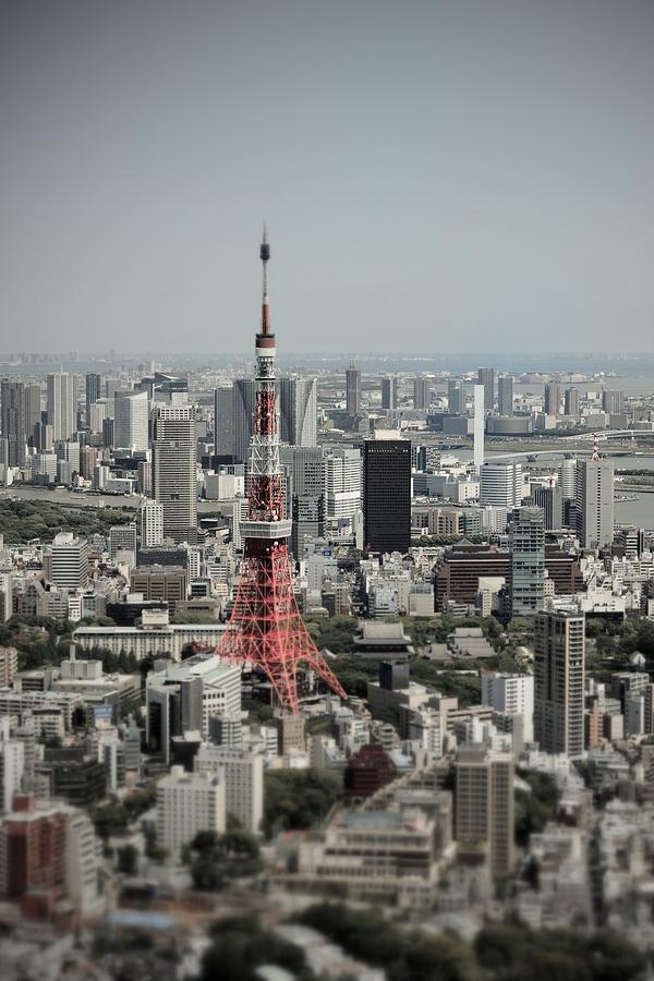 Tokyo Tower Photograph by Daniel Shi