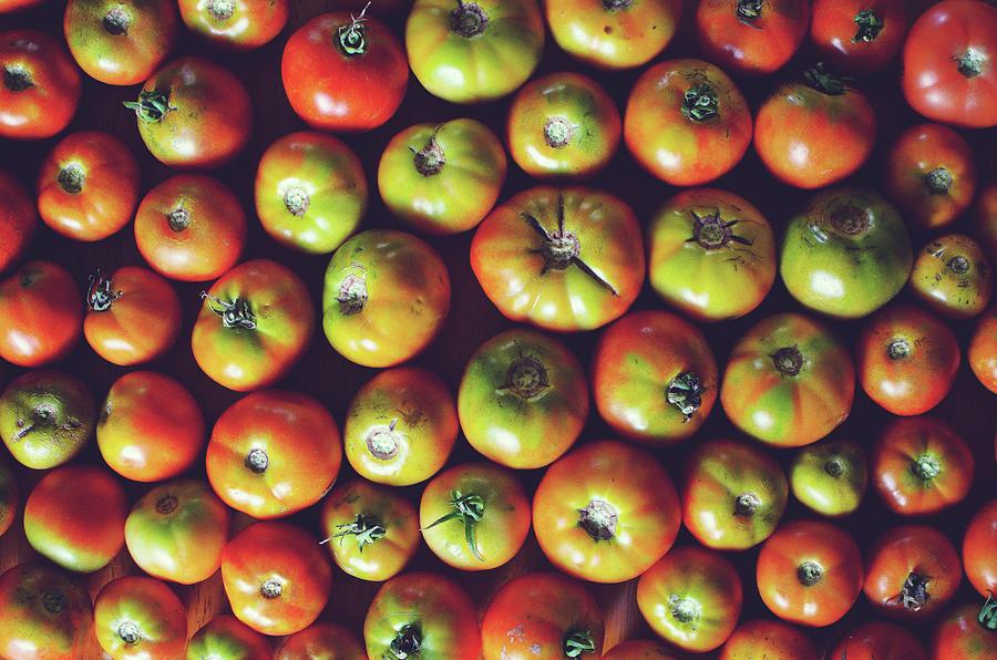 Tomatoes Photograph by Lisa Gutierrez