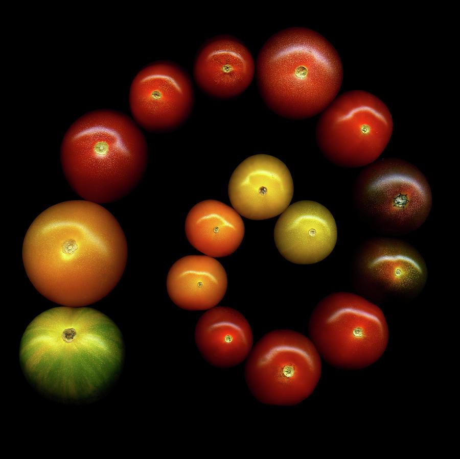 Tomatoes Photograph by Photograph By Magda Indigo