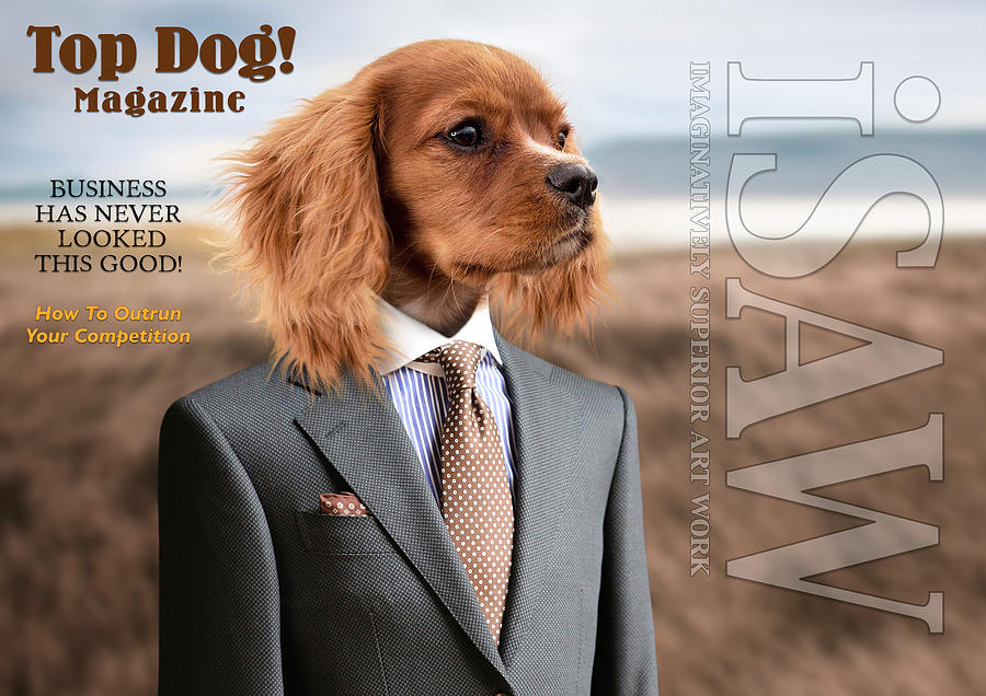 Top Dog Magazine by ISAW Company