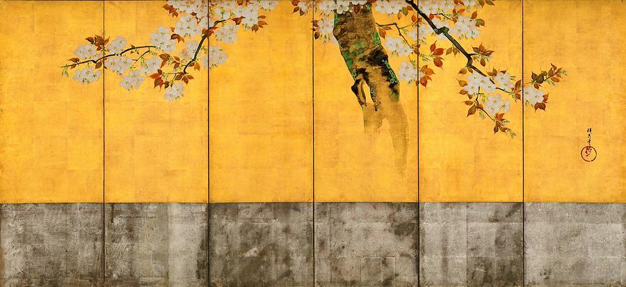 Sakai Hoitsu Painting - Top Quality Art - Blossoming Cherry Trees by Sakai Hoitsu