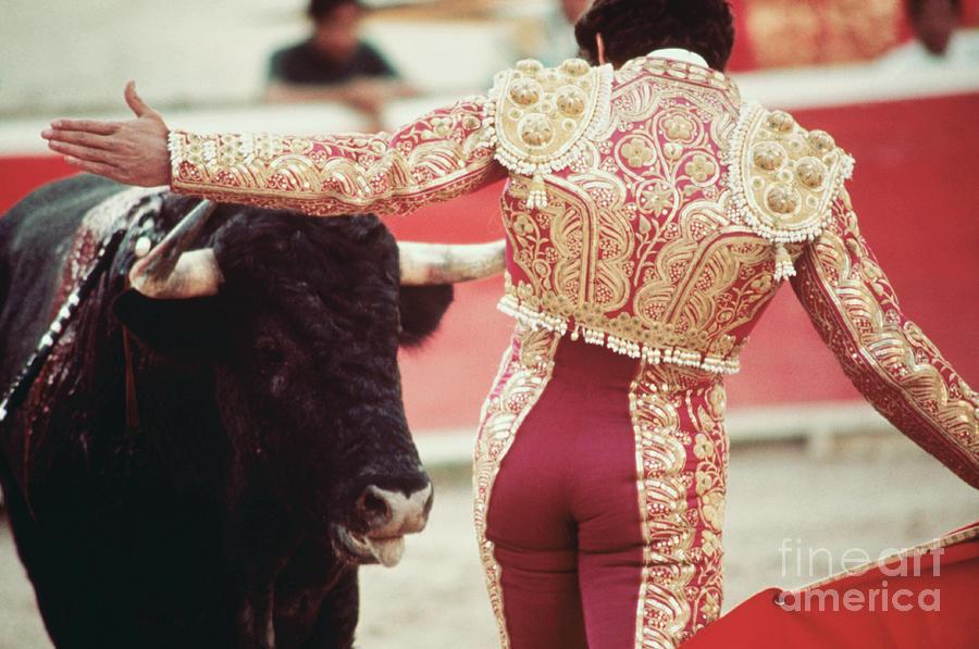 Toreodor With Bull Photograph by Bettmann