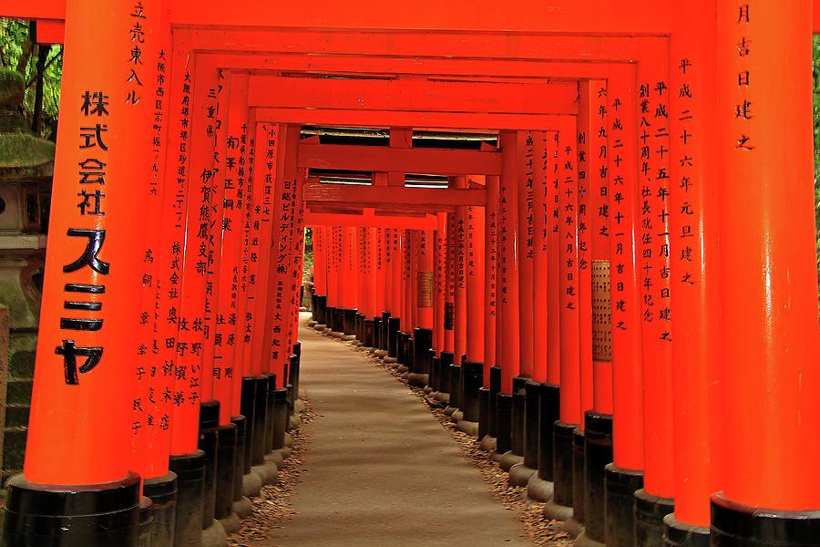 Torii Gates - Fushimi Inari-taisha Shrine - Kyoto, Japan by Richard Krebs