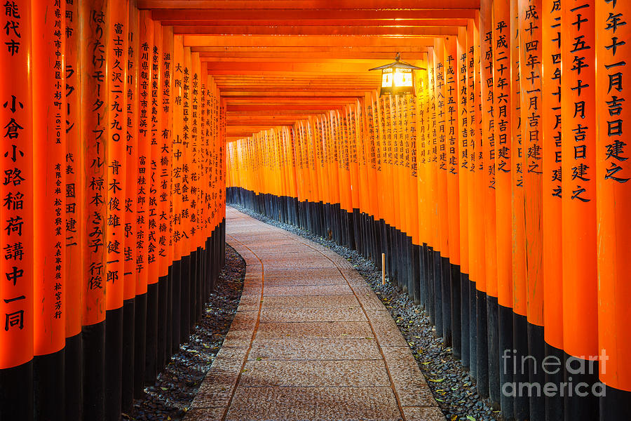 Symbol Photograph - Torii Gates In Fushimi Inari Shrine by Lkunl