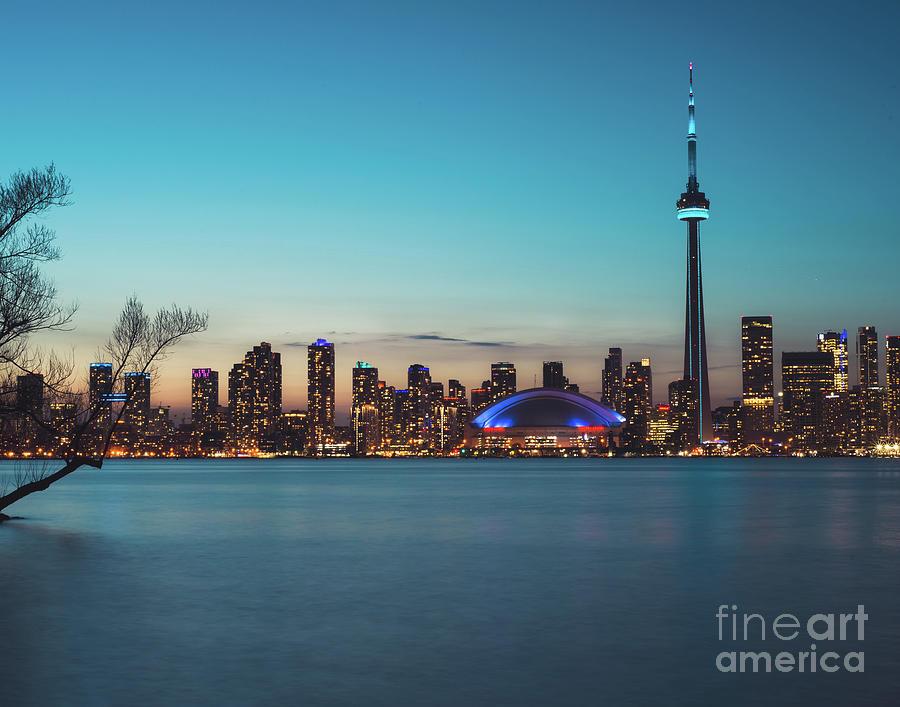 Toronto Night by Sonja Quintero