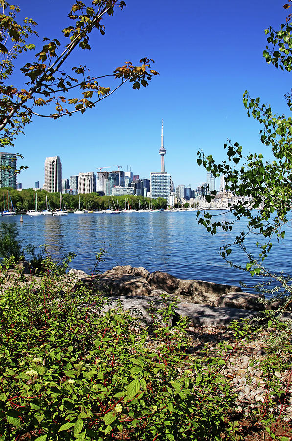 Toronto Photograph - Toronto Waterfront I by Debbie Oppermann