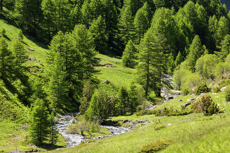 Torrent of Clapouse - 1 - French Alps by Paul MAURICE