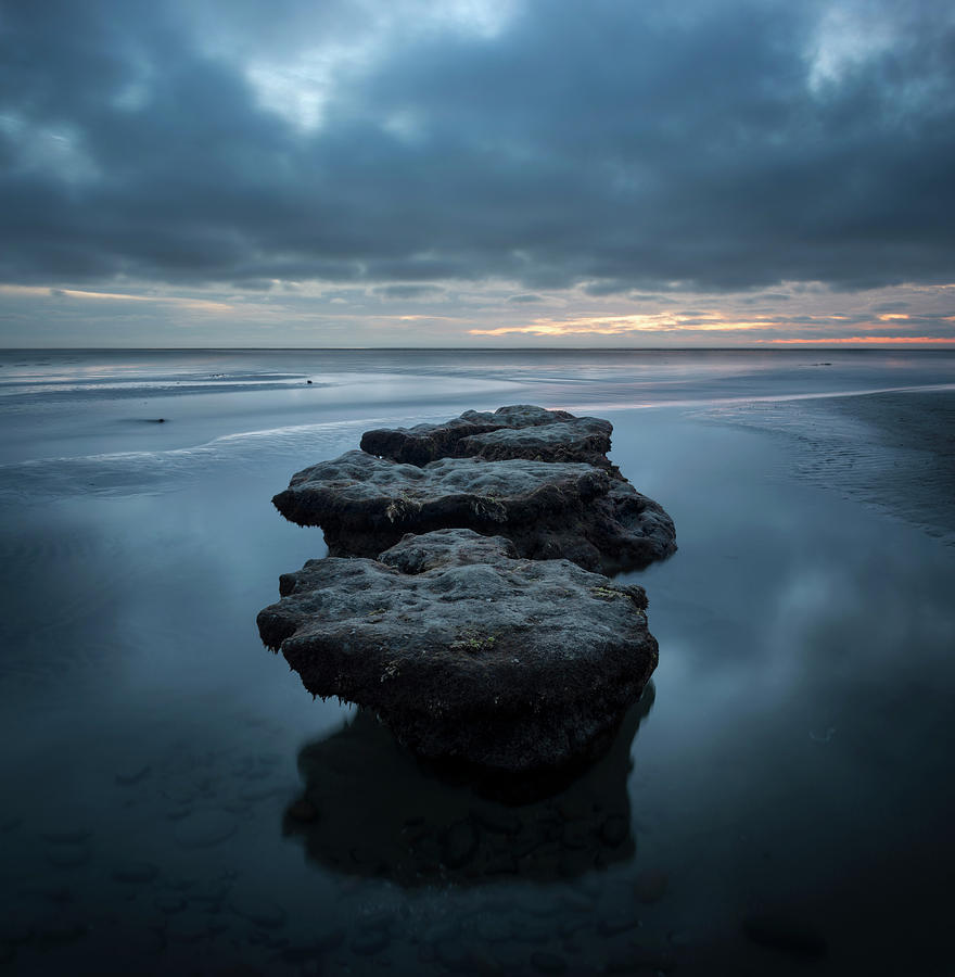 San Diego Photograph - Torrey Pines Low Tide Stones by William Dunigan