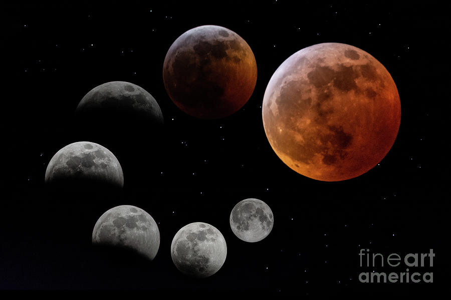 Total Lunar Eclipse by Jackie Johnson