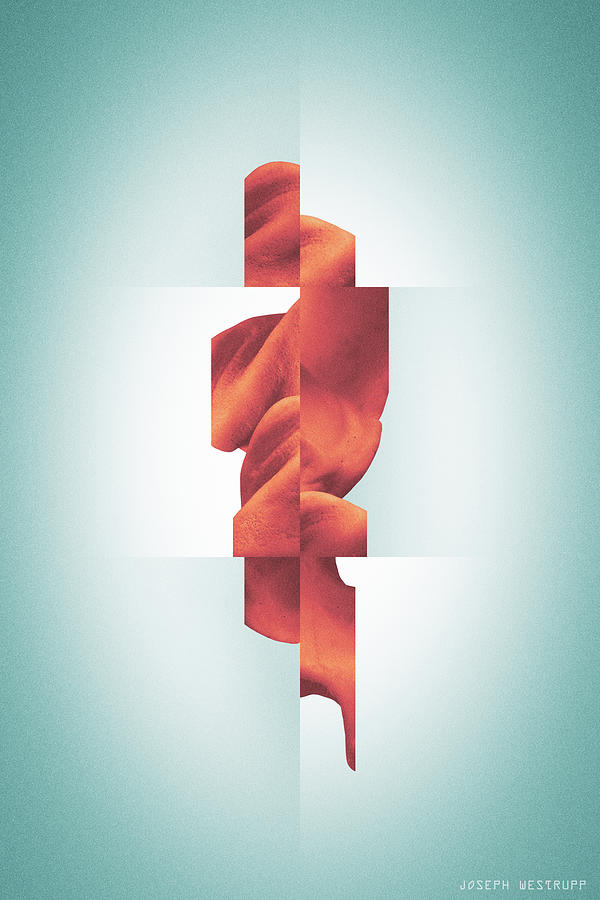 Totem - Fractured Surreal Abstract Seashell Collage by Joseph Westrupp