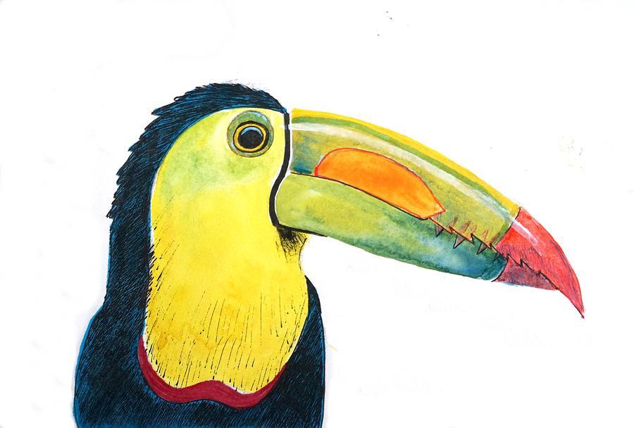 Toucan Painting - Toucan by Ed Tajchman