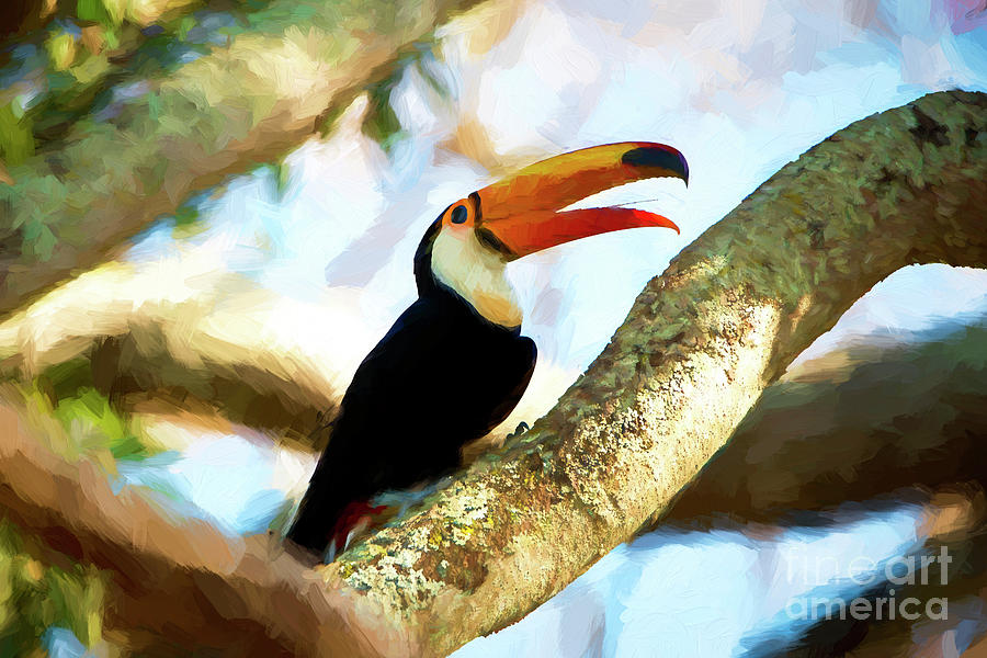 Bird Mixed Media - Toucan On A Tree by Pravine Chester