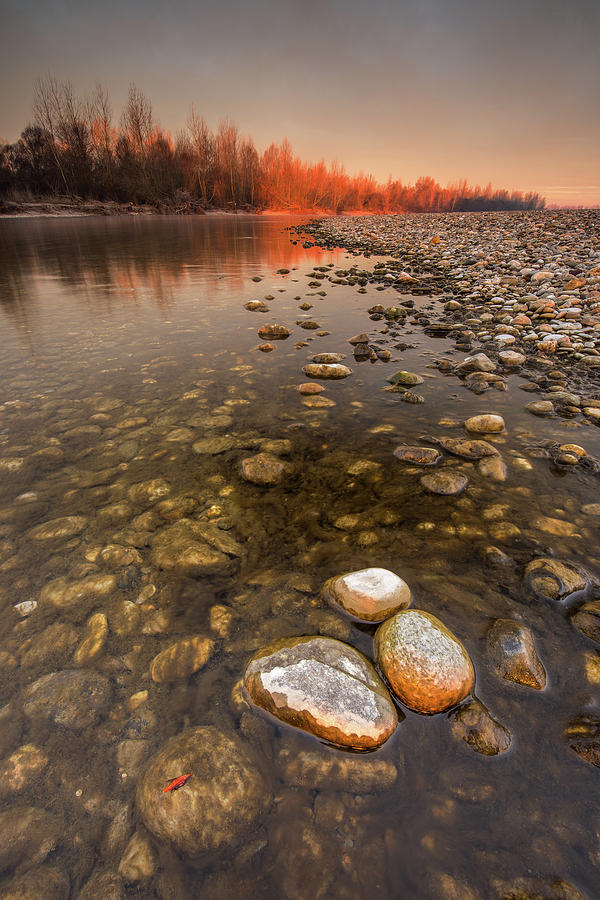 Touch of rising Sun by Davorin Mance