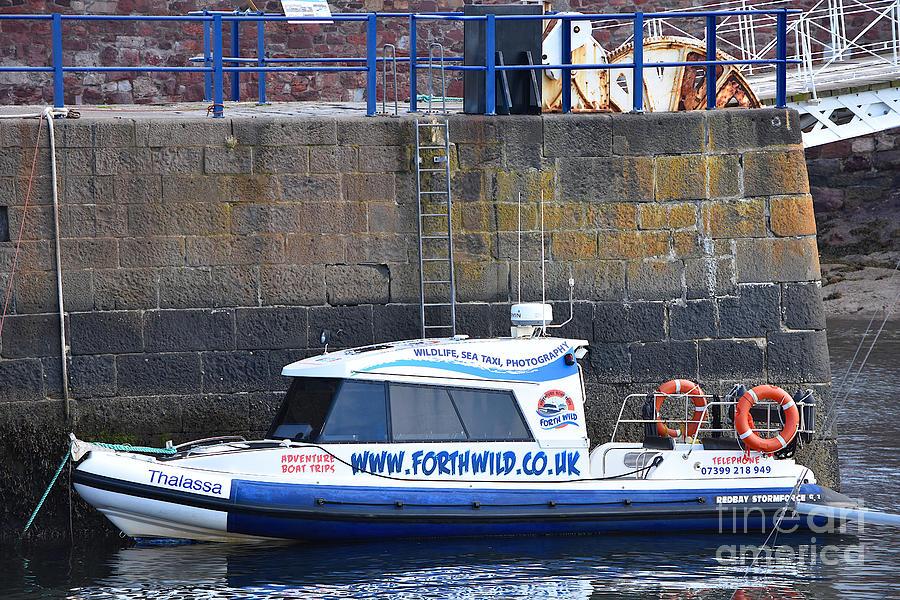 Tour Boat Dunbar Harbour by Yvonne Johnstone