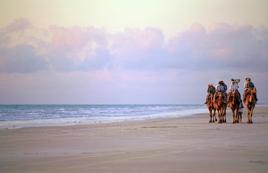 Tourists Riding Camels On The Beach Photograph by Travel Ink