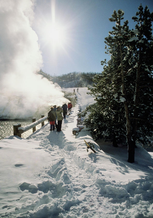 Tourists Watching A Geyser, Yellowstone by Medioimages/photodisc