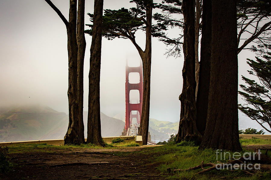San Francisco Bridge Photograph - Tower In The Fog by Caroline Jeanine
