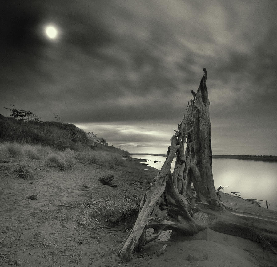 Beach Photograph - Tower Of Song by Geoffrey Ansel Agrons