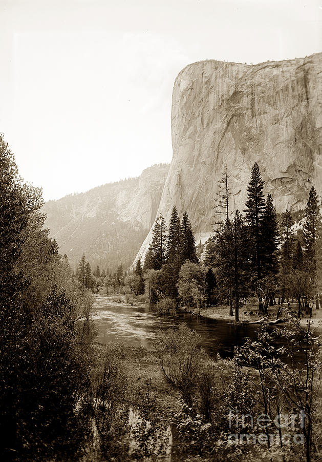 Towering El Capitan from the banks of the Merced River, Yosemite by California Views Archives Mr Pat Hathaway Archives