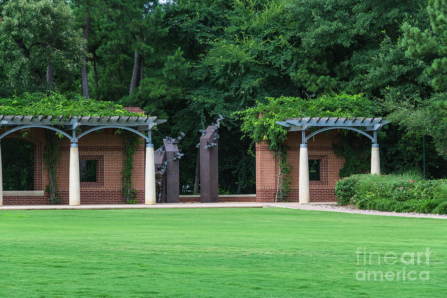 Town Green Park, The Woodlands, Texas Photograph by D Tao