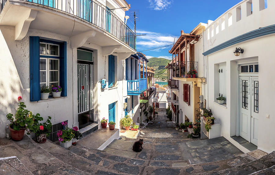 Town Of Skopelos by Evgeni Dinev