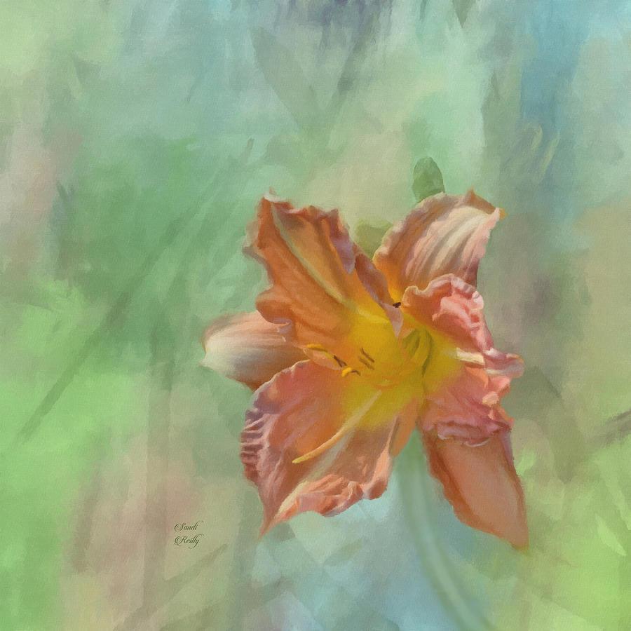 Fancy Toyland Peach Daylily  by Sandi OReilly
