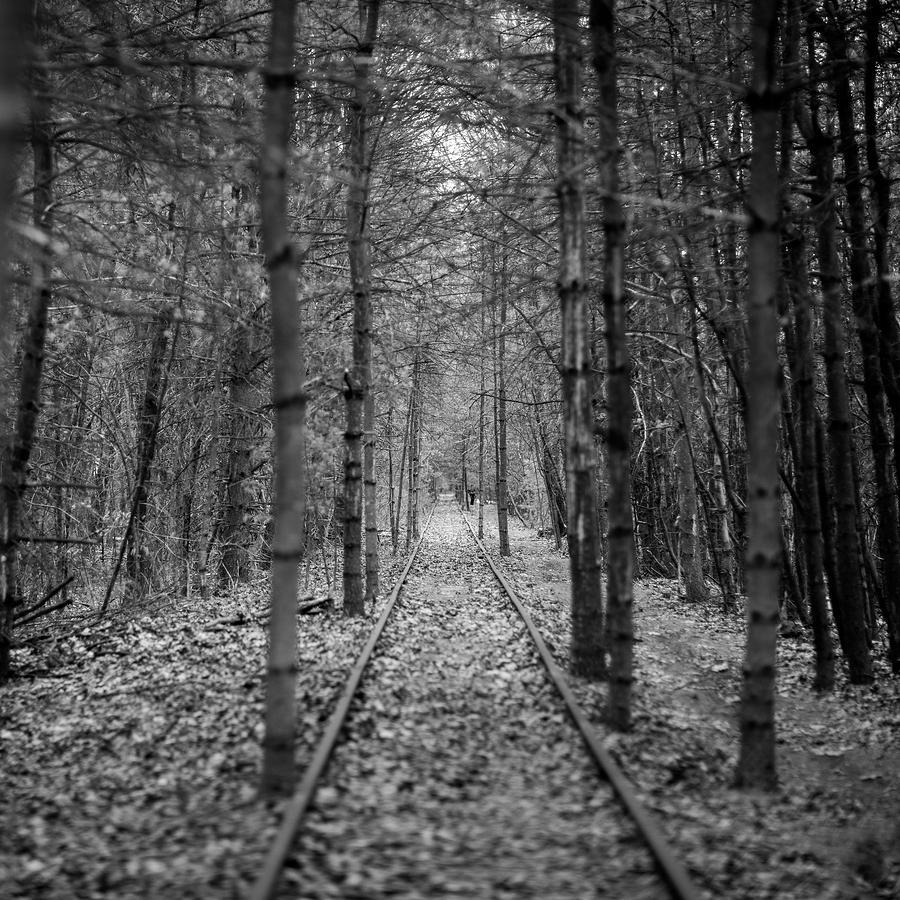 Tracks by George Pennington