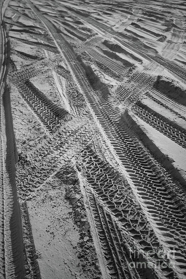 Black And White Photograph - Tracks In The Sand by Colleen Kammerer