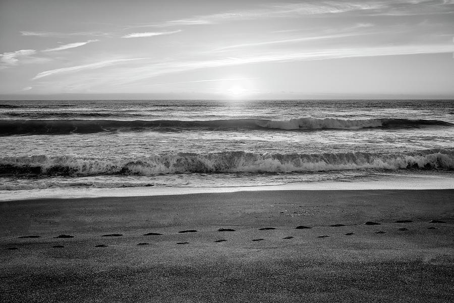 Tracks In The Sand by Steven Clark