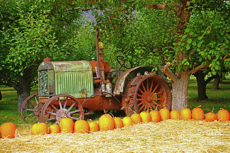 Tractor and Pumpkins by Randy Harris