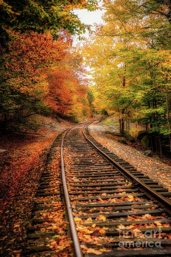 Train Tracks by Susan Garver
