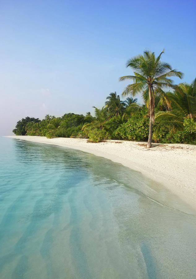 Tranquil Tropical Beach Scene Photograph by Rosemary Calvert