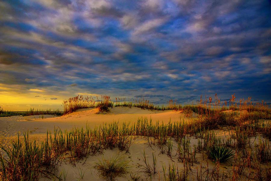 Tranquility  by John Harding