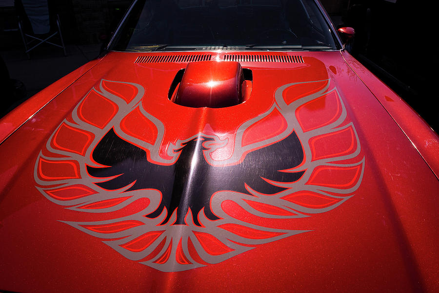 Trans Am by Philip Rispin