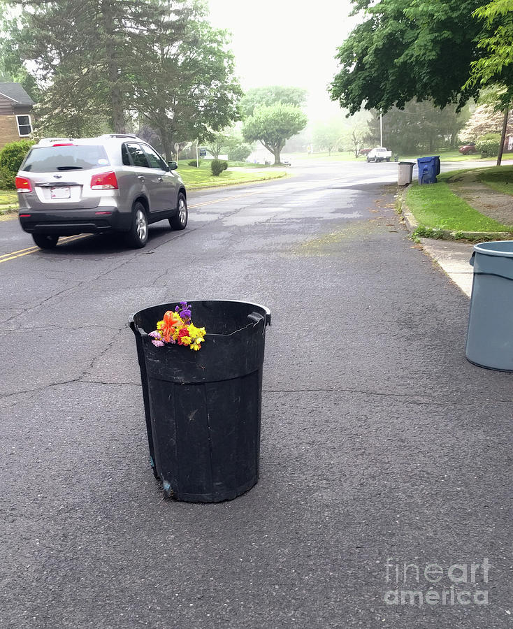 Flowers Photograph - Trash Day Road Bouquet  by Steven Digman