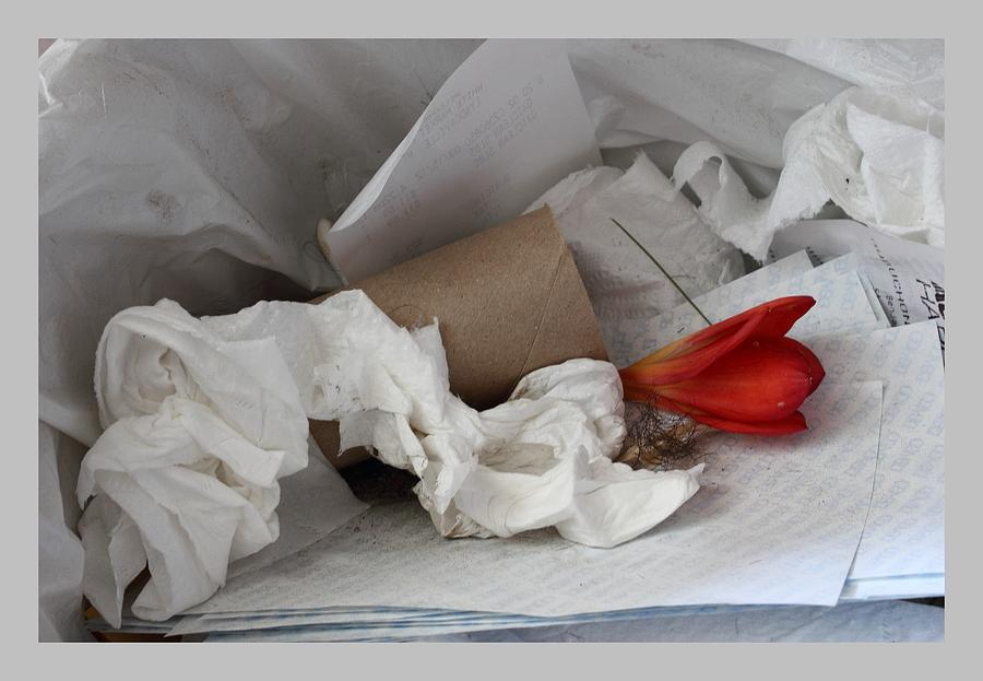 Trash Photograph - Trash Flower by David Wilde