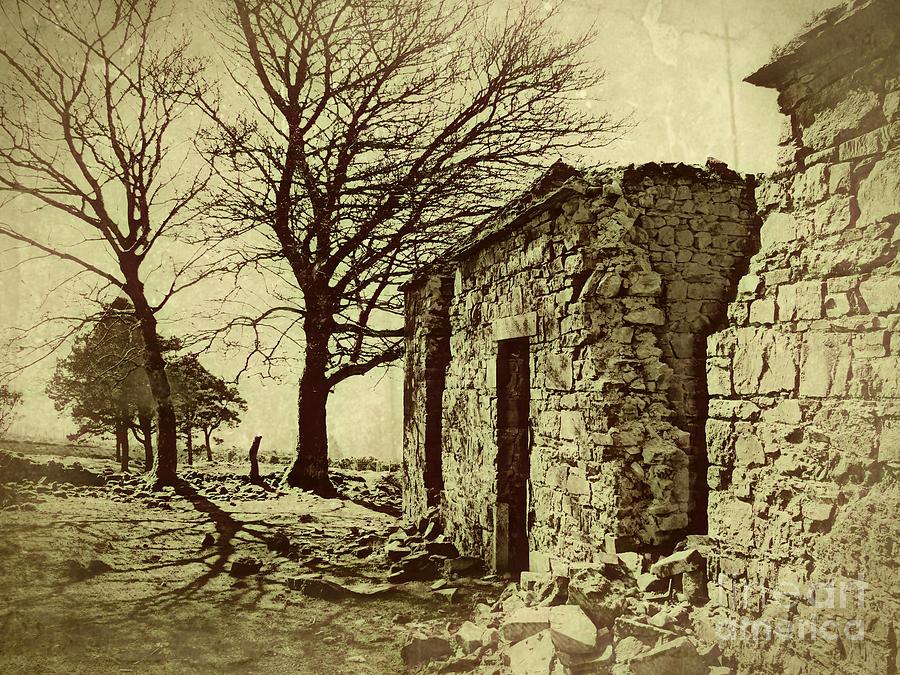 Ruins Photograph - Tree And Ruins by Jurgen Huibers